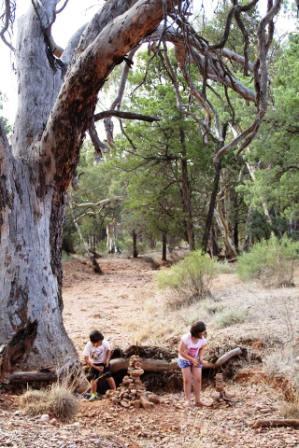 5 Horseshoe Top-End kids and nature.jpg