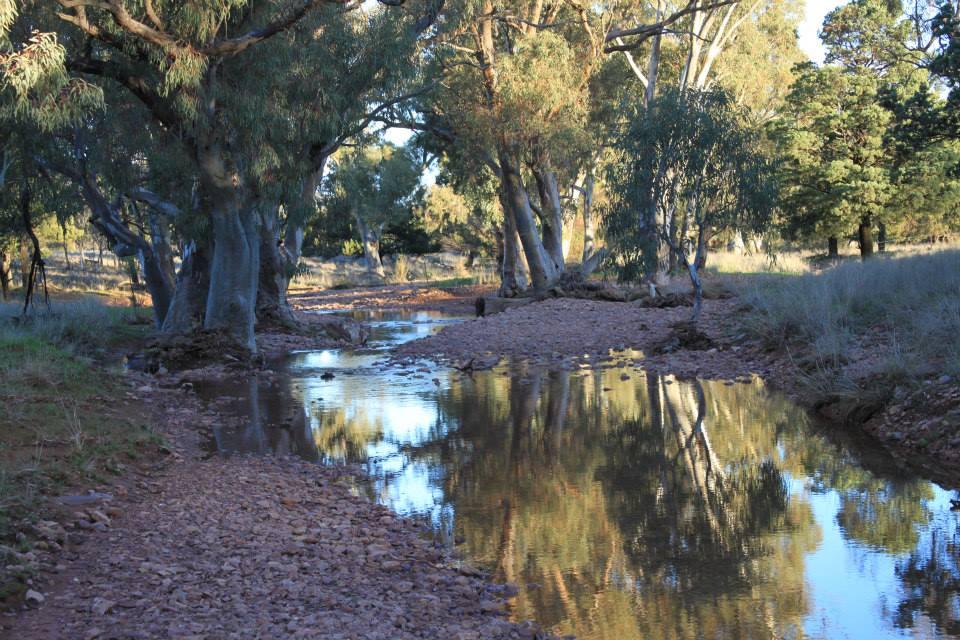 creekrunning.jpg