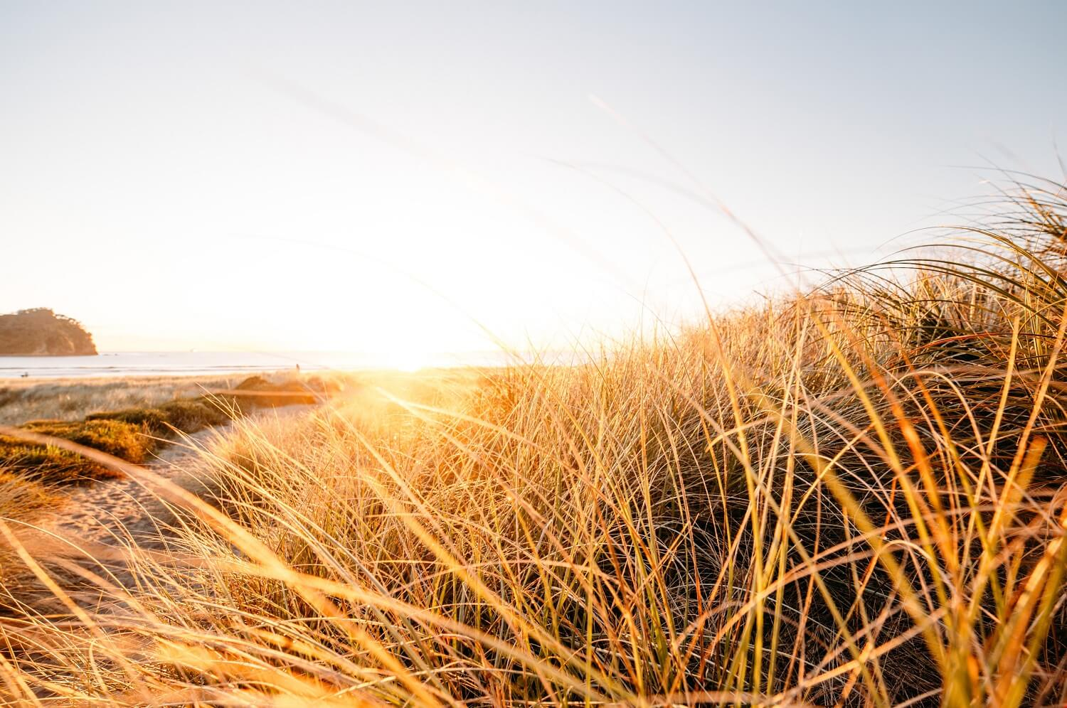 """When we think of """"vitamins,"""" we know they're super-important for health. But vitamin D is special. This week Midlife Menu looks at the so-called """"sunshine vitamin"""" and suggest 3 ways to get more of it into your life. www.midlifemenu.com/blog/vitamin-d"""
