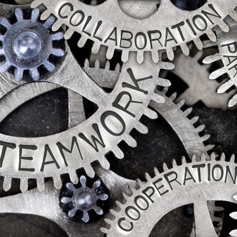association-management-480.jpg