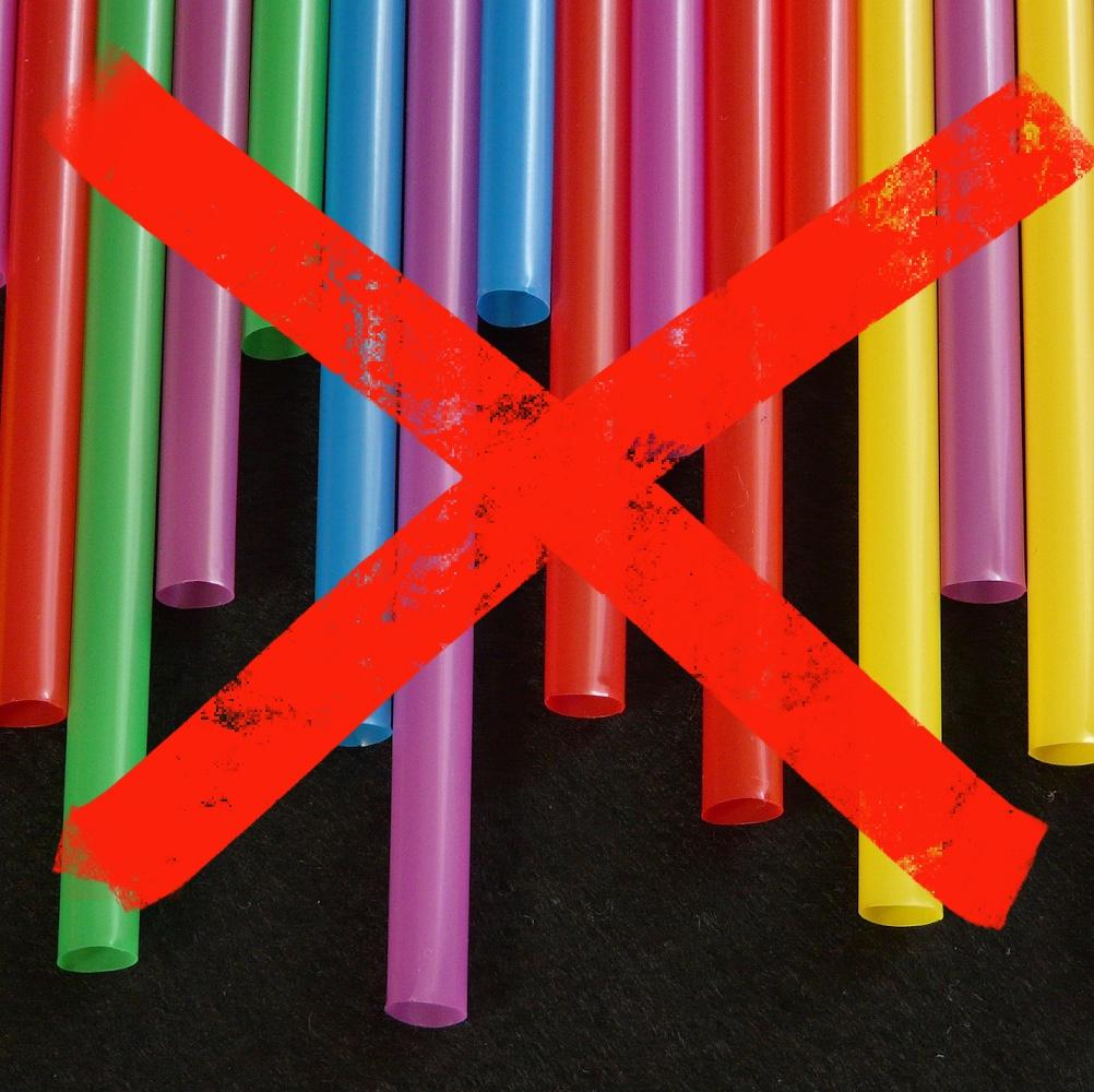 no more straws square.jpg