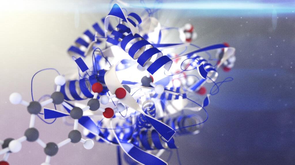 EnzymePet02-1024x576.jpg