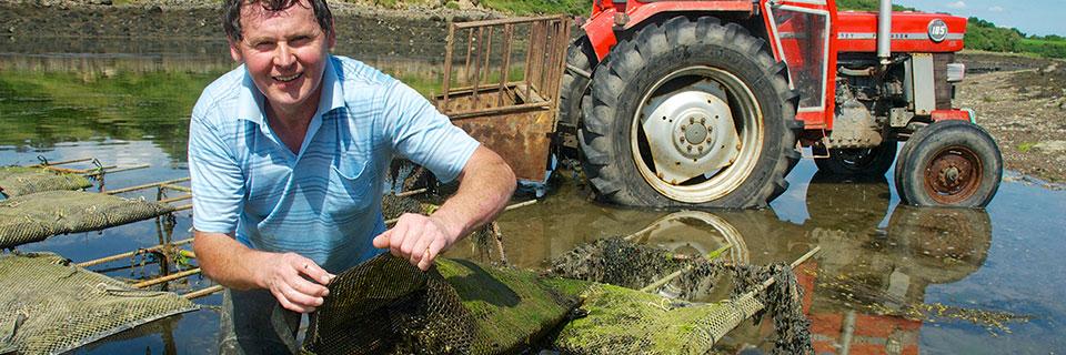 Padraic Gannon mussel farm.jpg