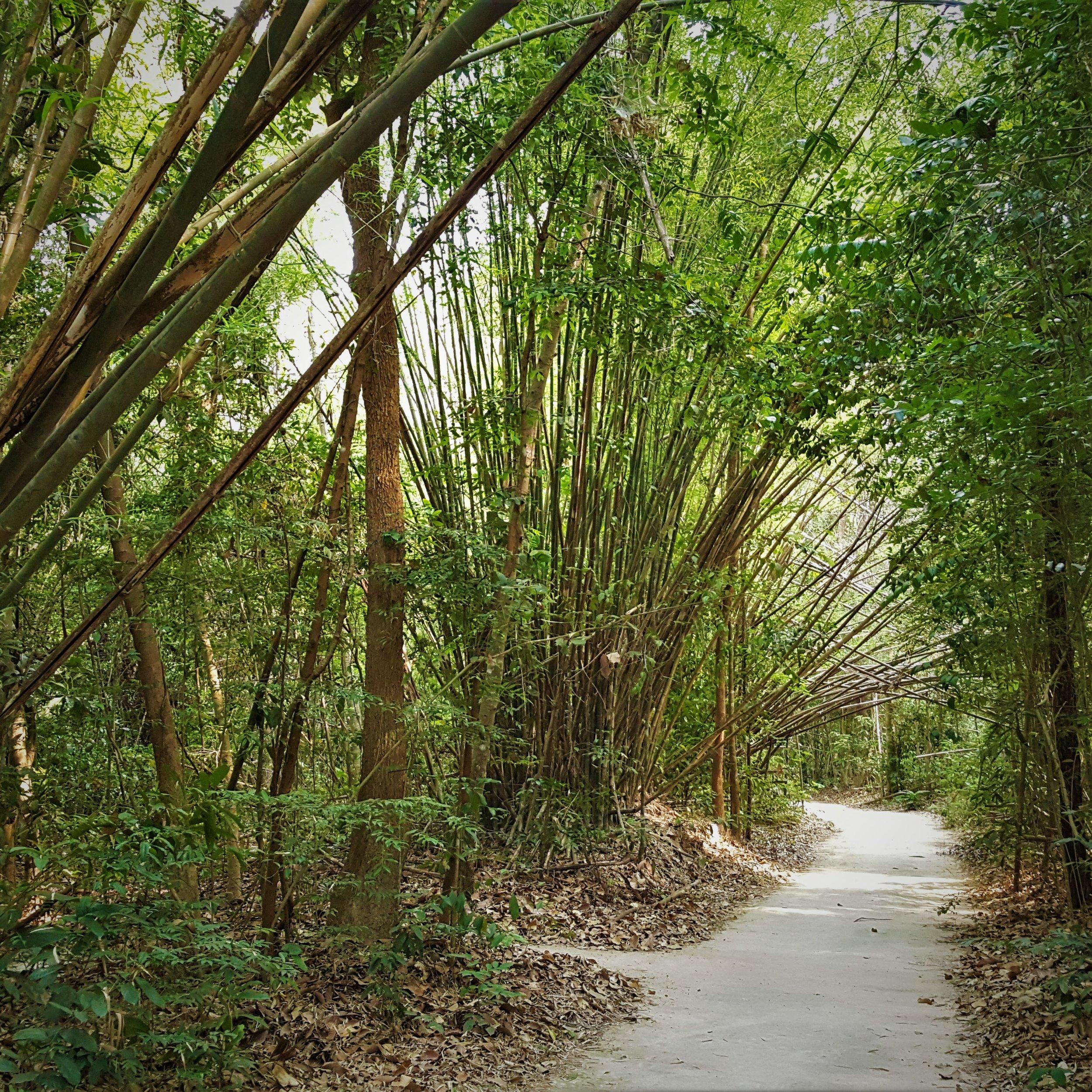About Wat Nanachat