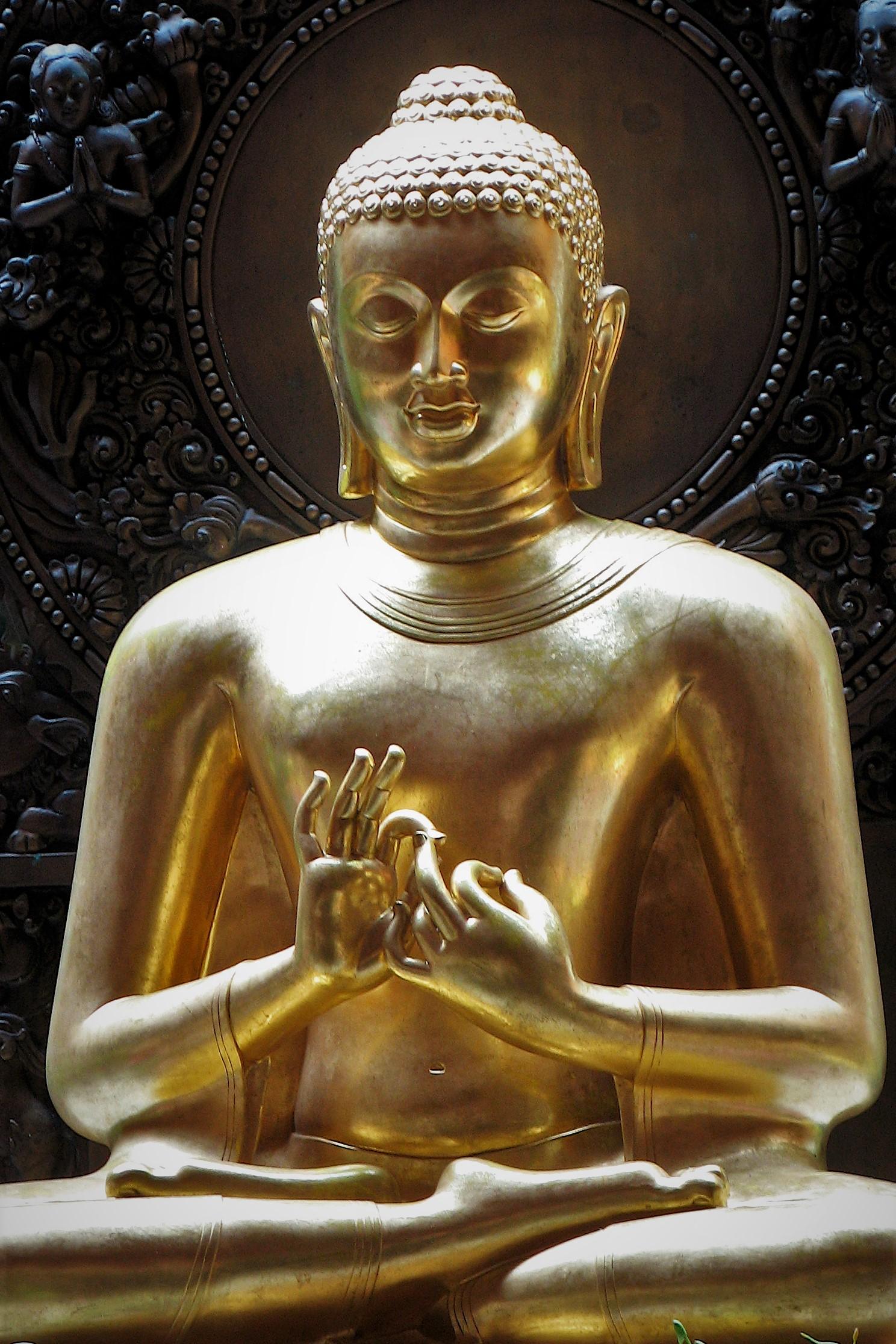 Buddha IMG_4262 crop.jpg