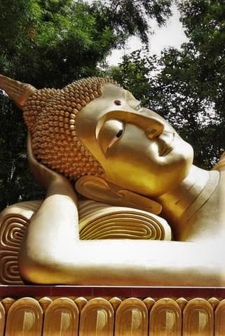 Wat Pah Vivek 08.jpg