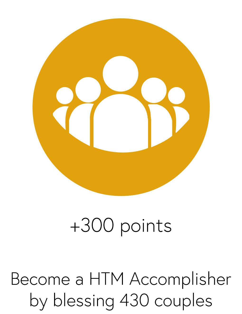 icon accomplisher type2.jpg