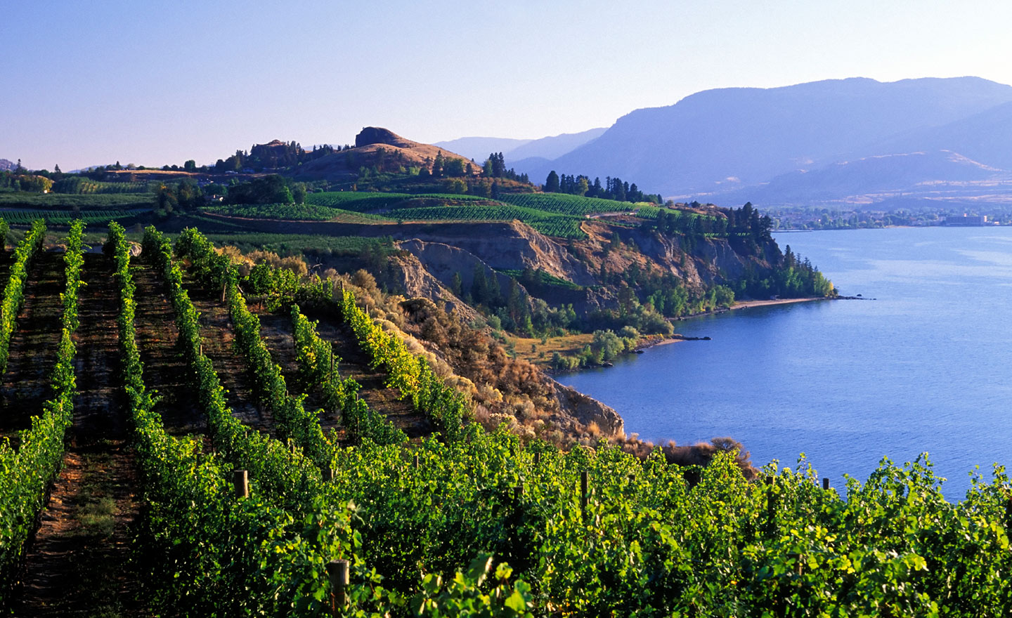 A Trusted Name In Kelowna Real Estate    View Listings