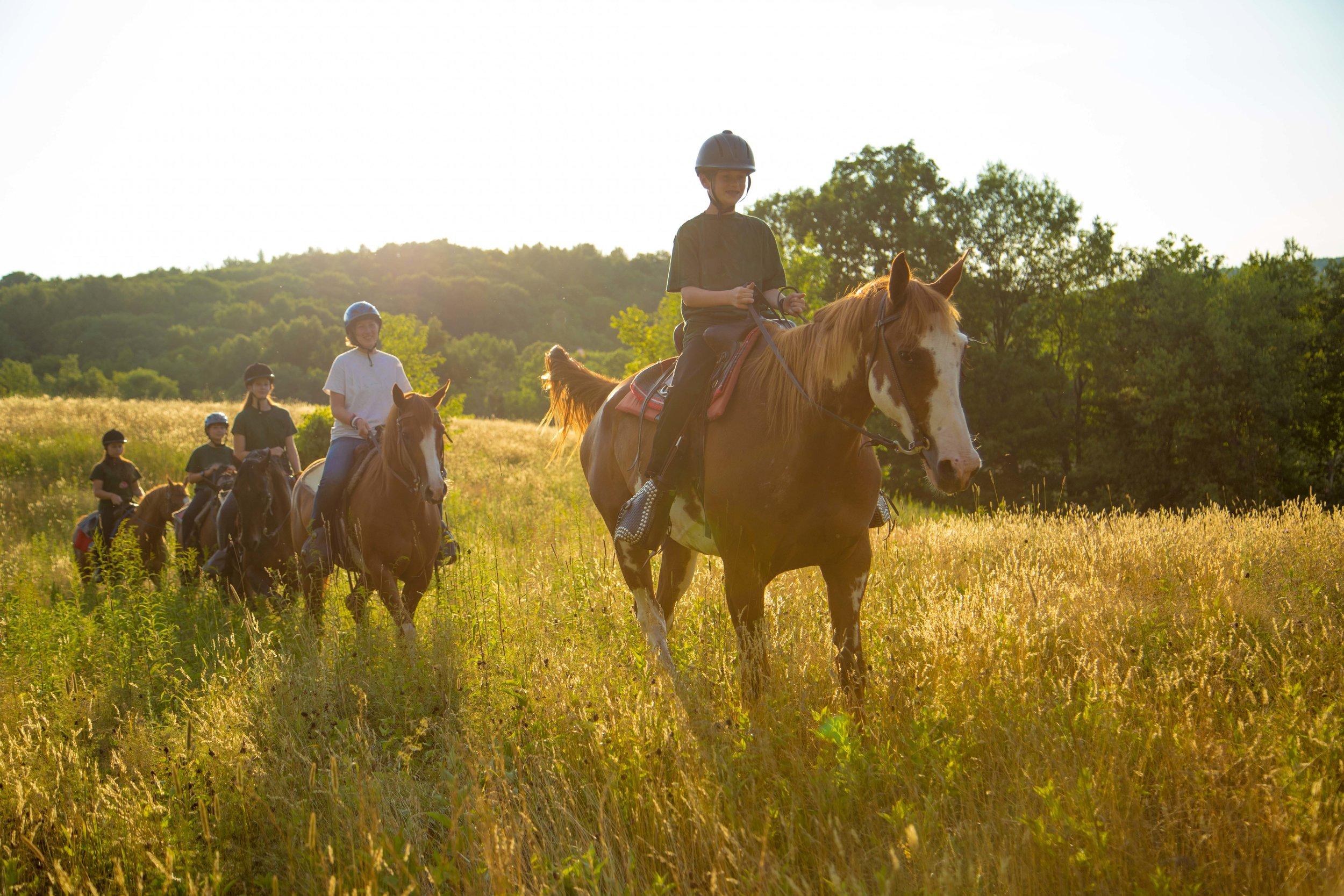 Horseback 2.jpg