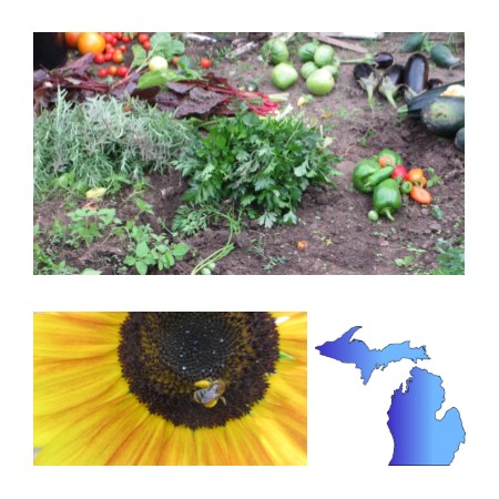 Gardening In Michigan - Whether you are looking to save money, love fresh flavor, or ju st enjoy working with nature, Michigan is a great place for growing fruit, vegetables, flowers and other landscape plants. This website highlights the resources at Michigan State University for gardeners. Our advice is based on science performed at MSU or other land grant universities.