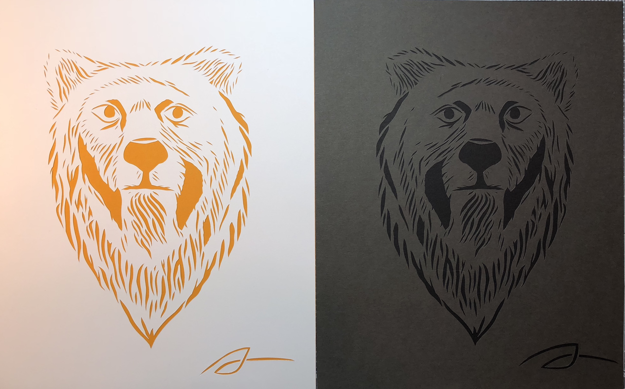 Bears in White and Brown