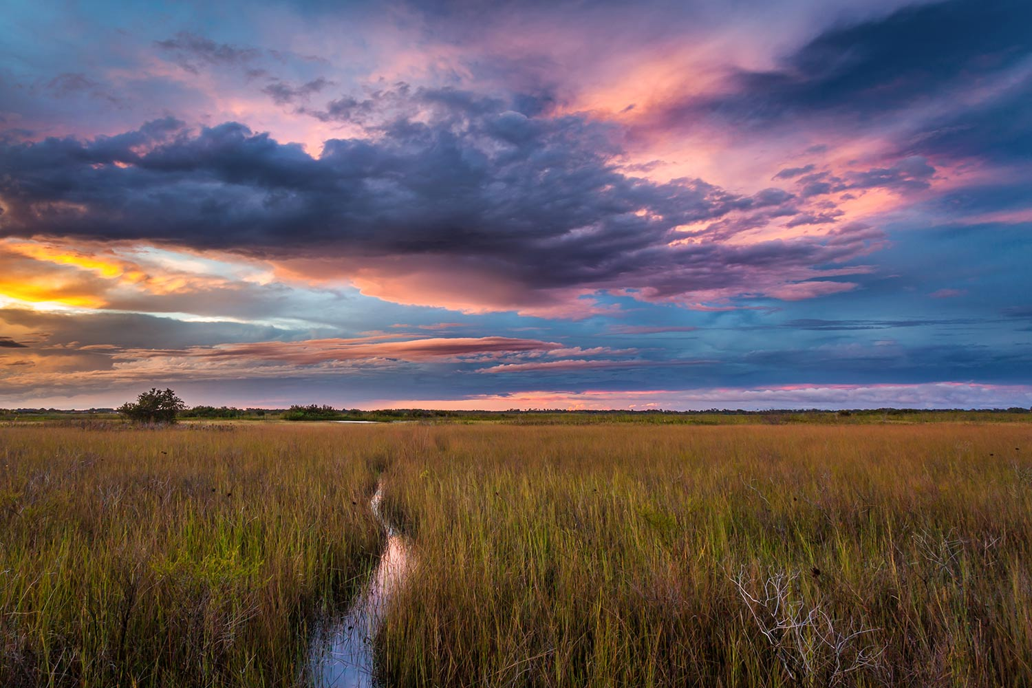One of the many unique characteristics about central Florida is, there's usually late afternoon thunderstorms which sometimes break apart before or during sunset. This is one of those occasions, over Fells Cove, with my kayak path in the grasses.