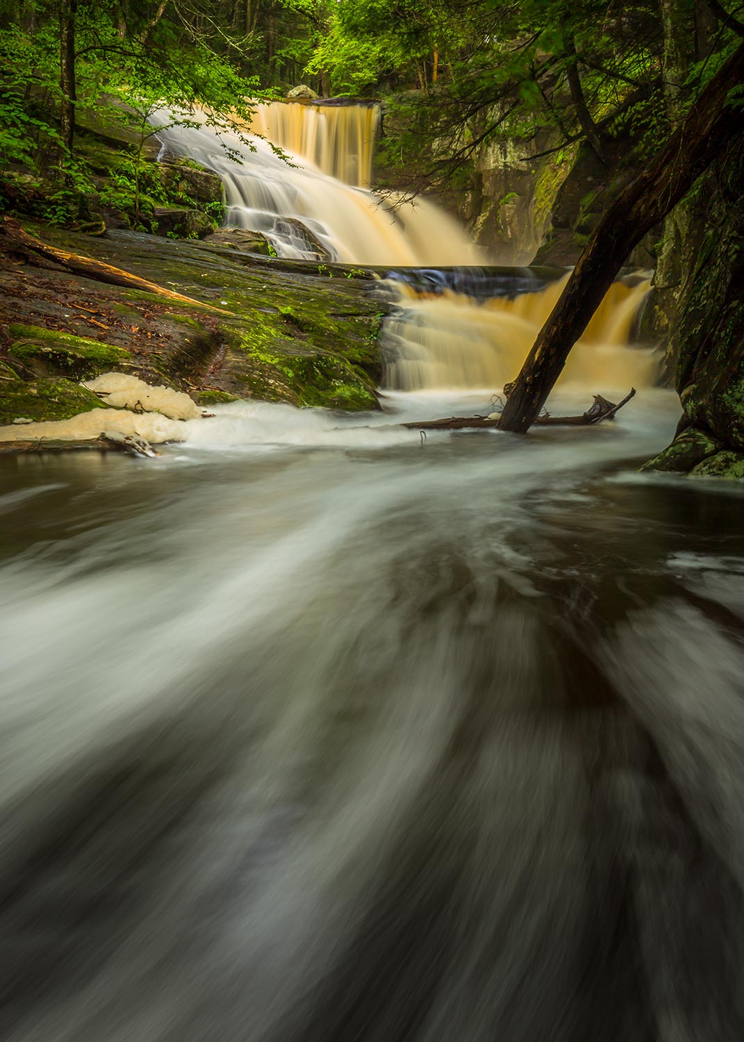 Down stream from Ender's Falls