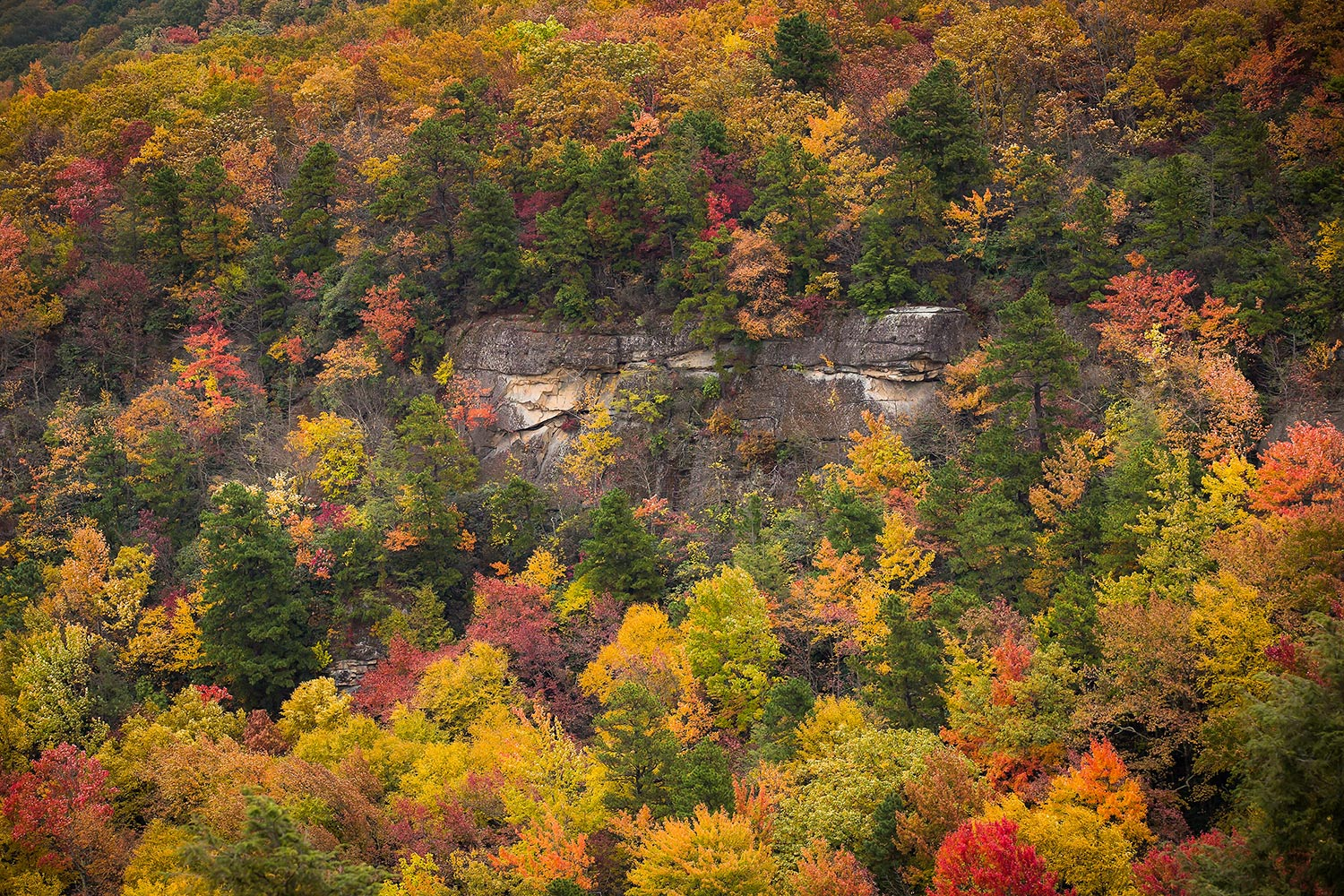 A rocky cliff surrounded by fall colors, VA.