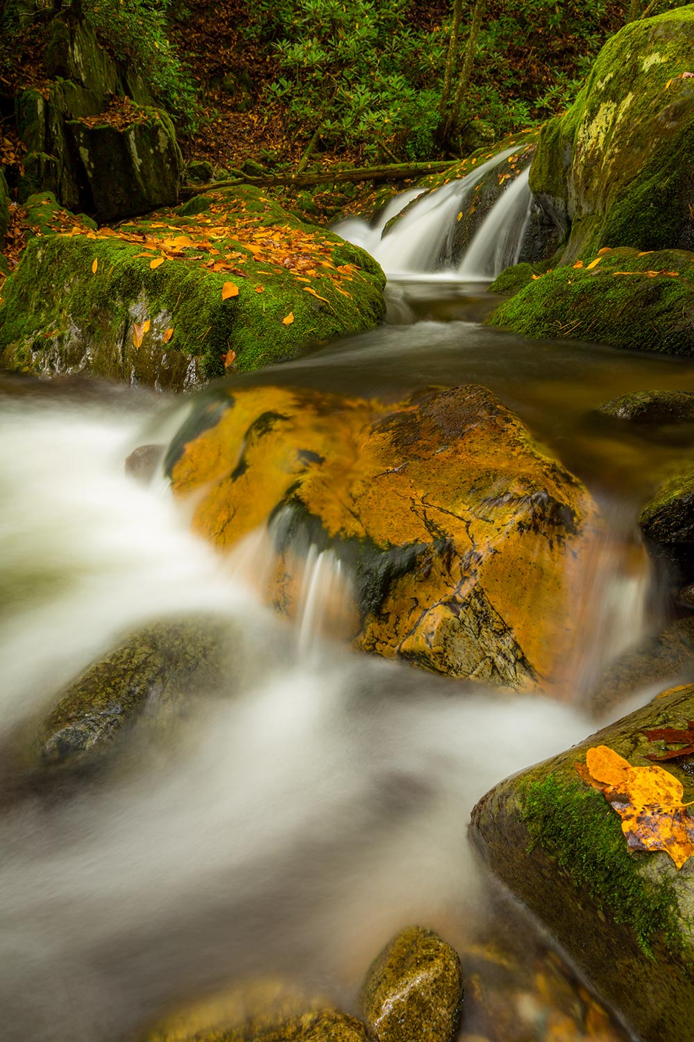 Smooth waters flowing through Rocky Fork State Park, TN.