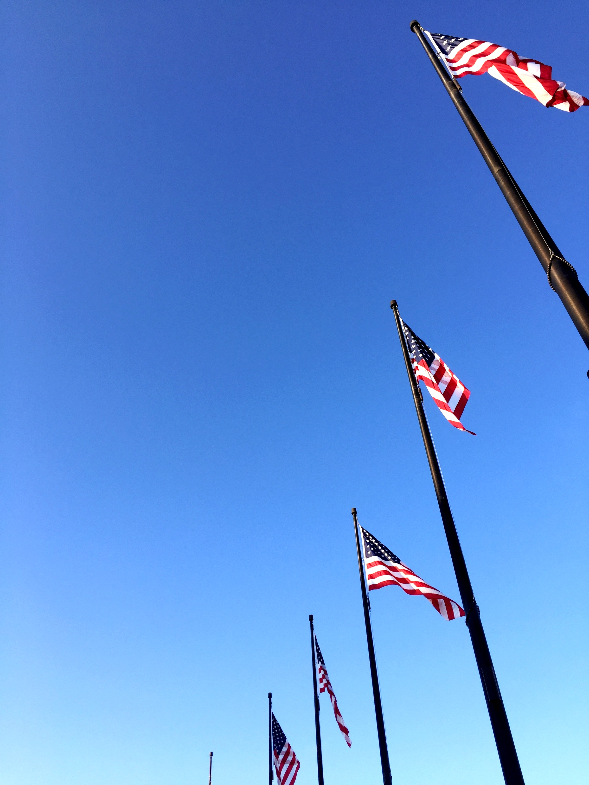 American flags at Navy Pier, Chicago