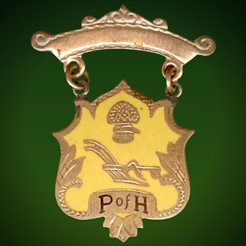 about-PofH-pin-500.jpg