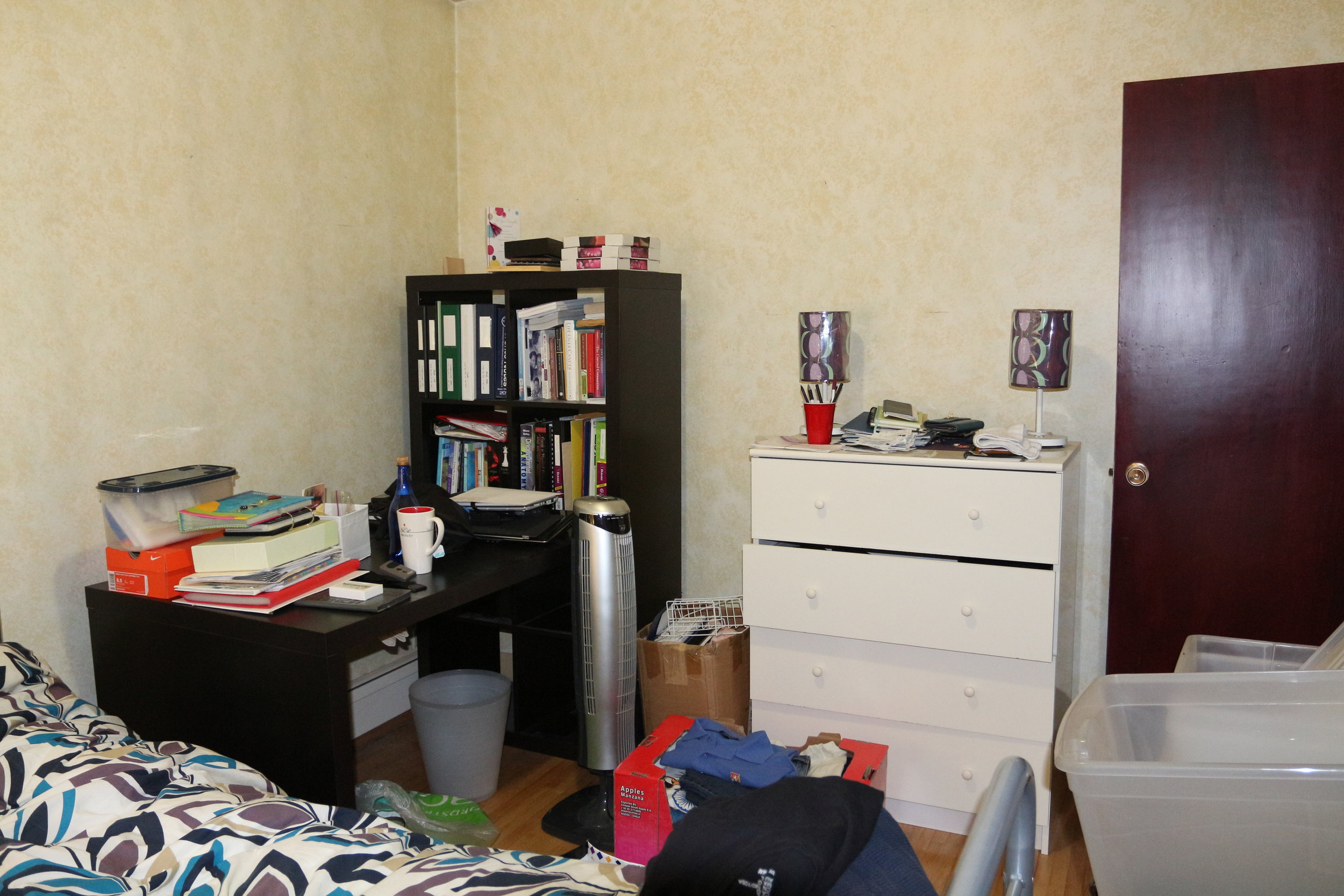 Before-Office/Spare room