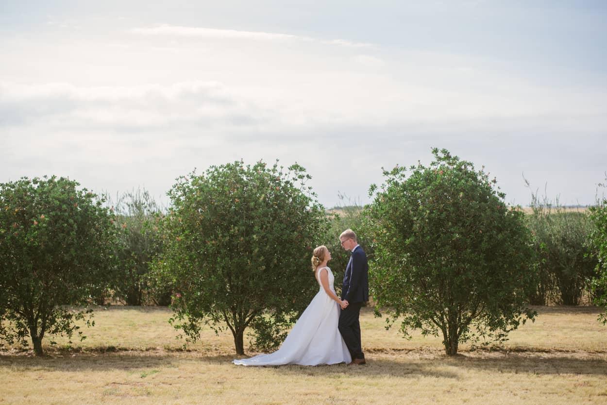 Wedding photos in an orchard