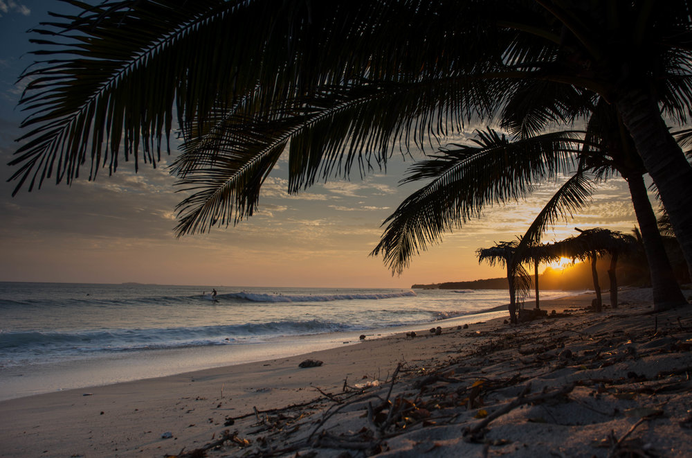 Surf - Hacienda Alegre.jpg