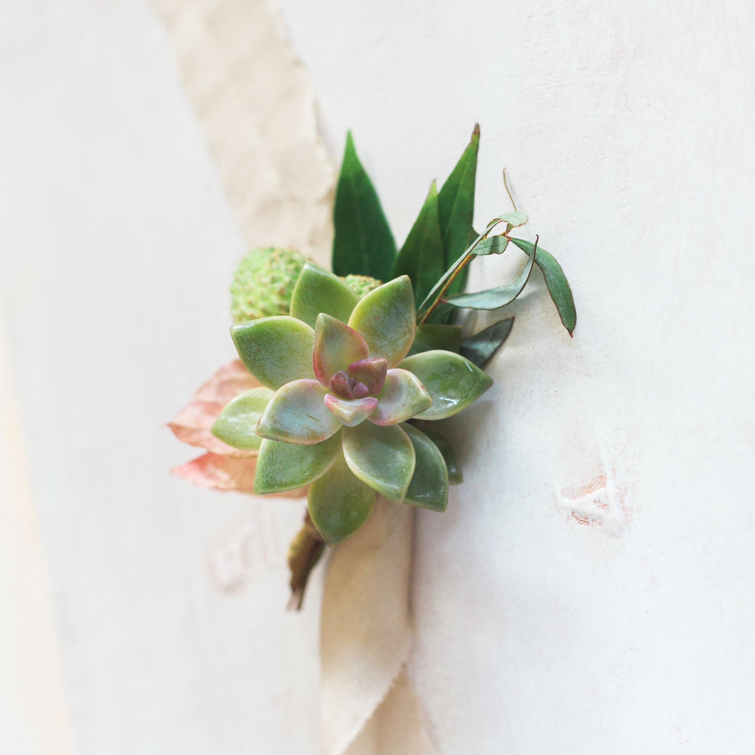 succulent boutonniere elopement flowers.jpg