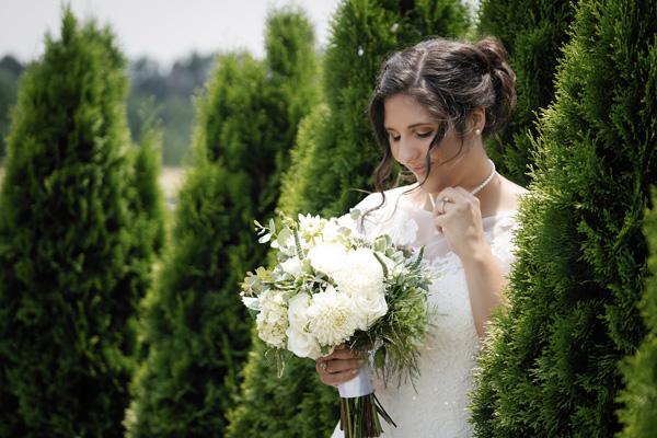 Bride-in-tree.jpg