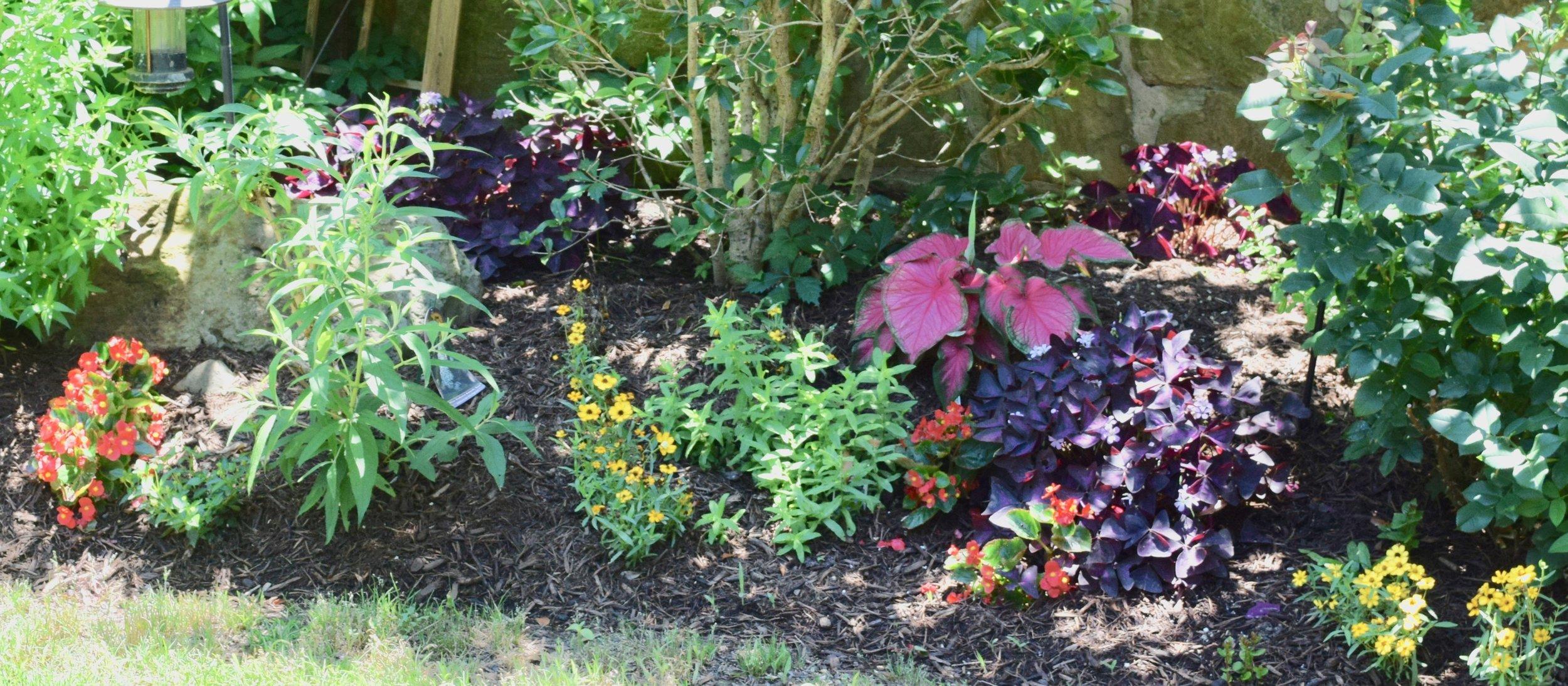 Garden Foley use.jpg