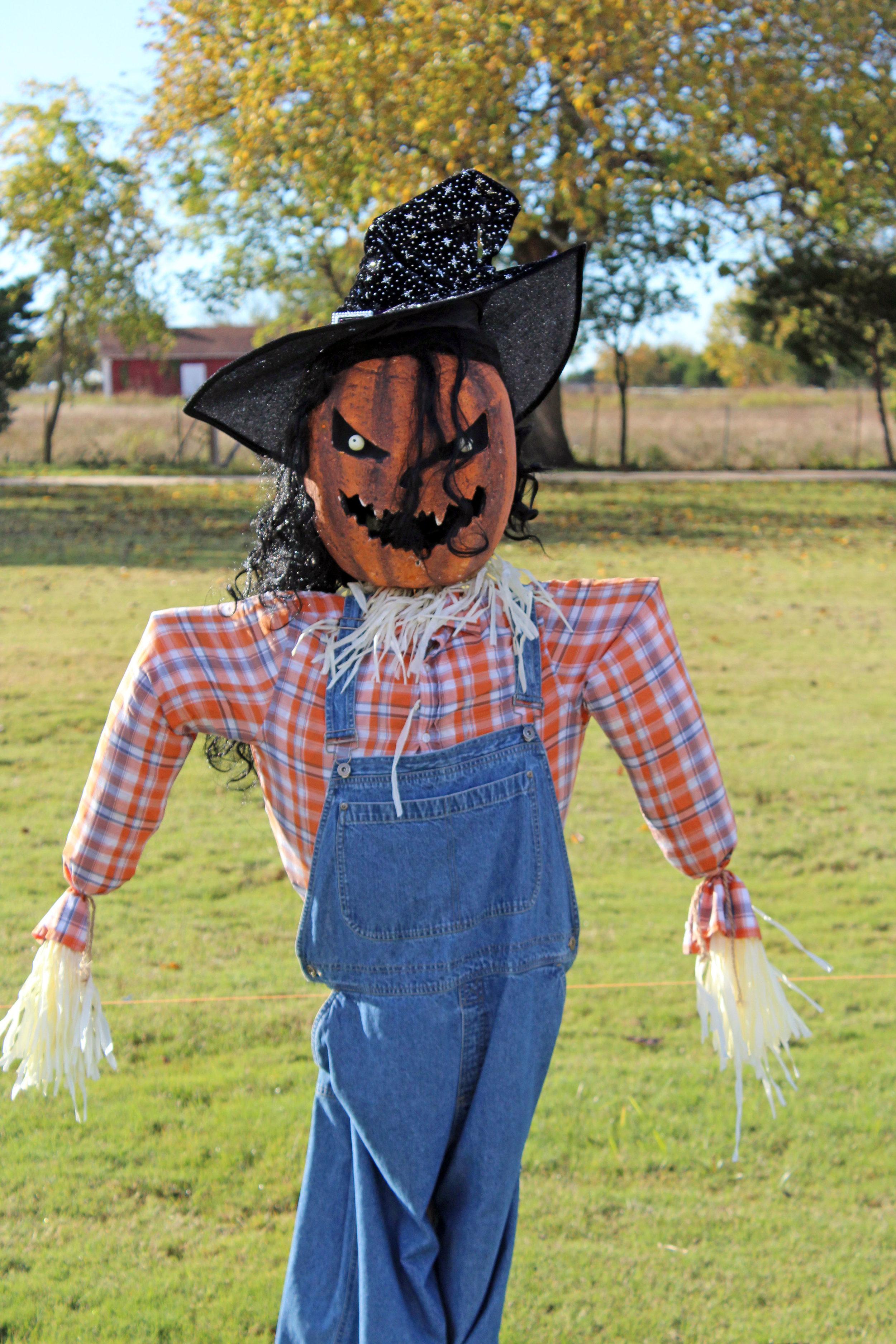 Lucas arbor scarecrow pumpkin.jpg