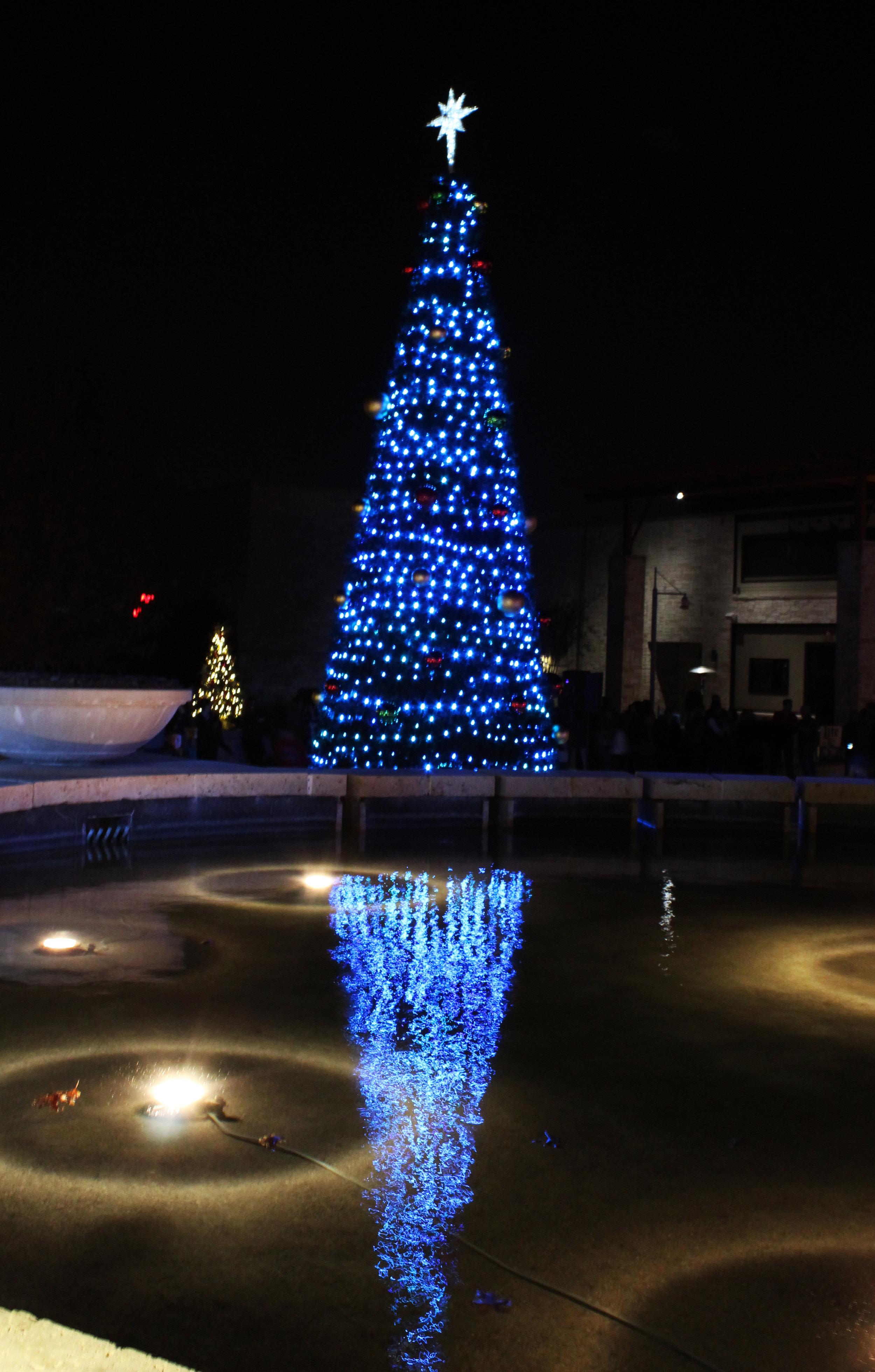 Fairview Christmas tree.jpg