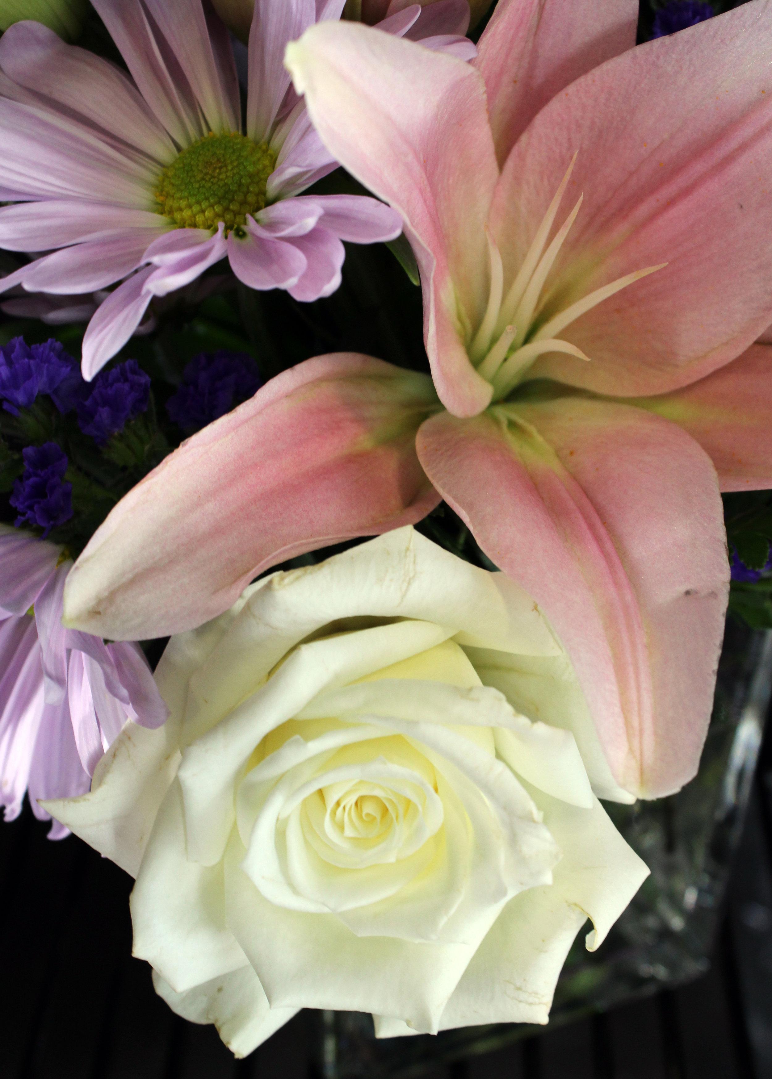lovjeoy flower flowers.jpg