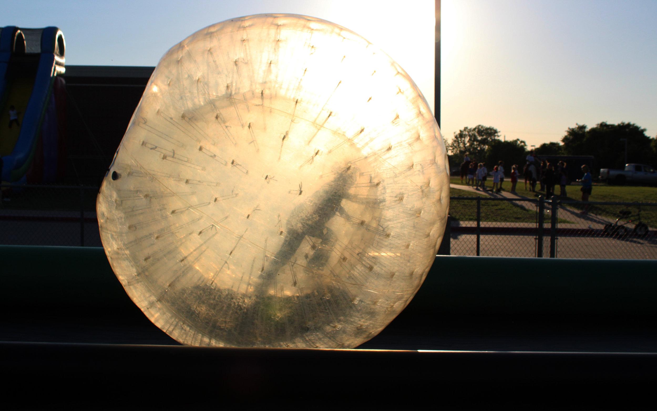 puster hamster ball.jpg