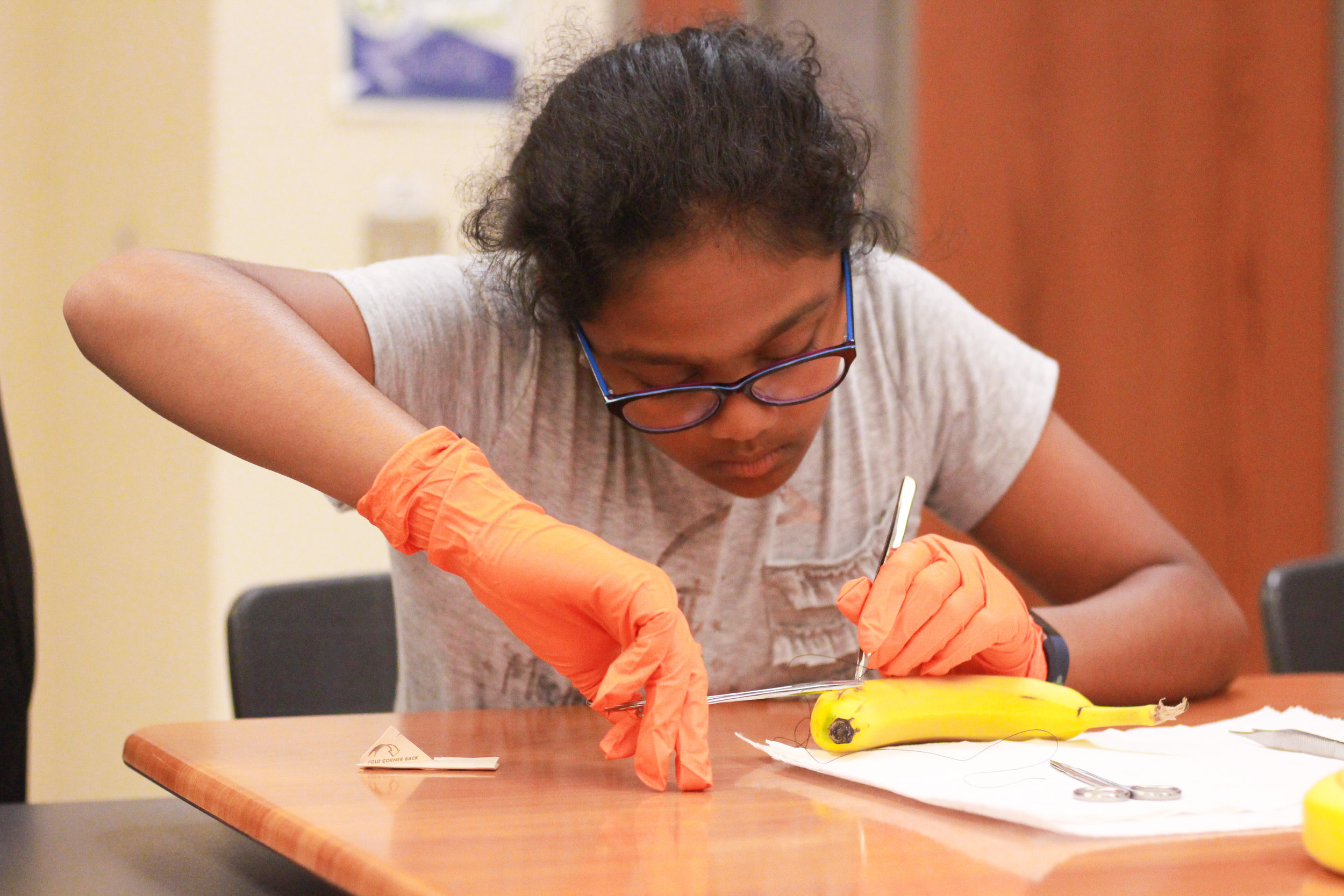 Anika Gadamsetty learns how to properly suture a banana: Photo by Grace Nguyen