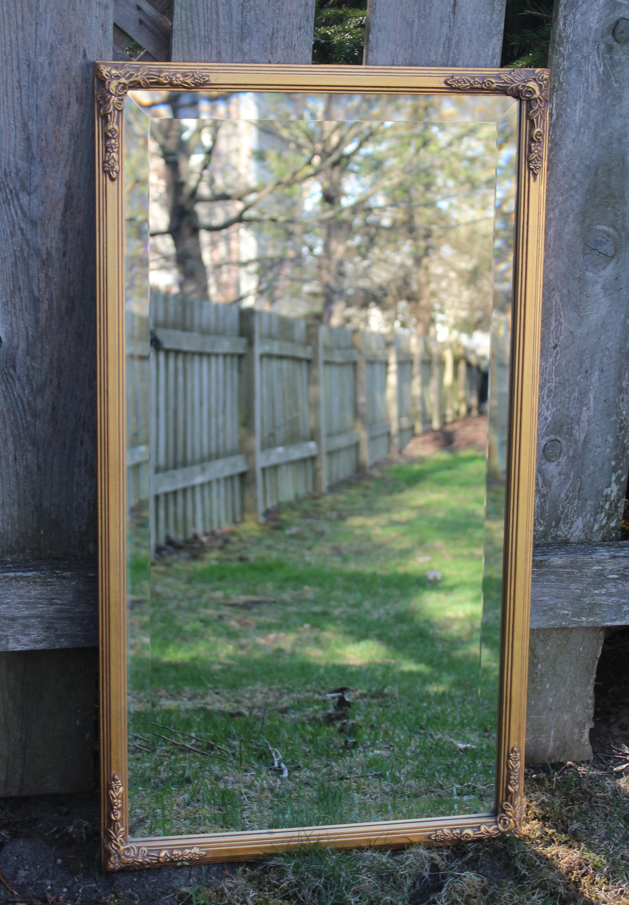 Gold Mirror 1 - 1.5ft W x 3ft H