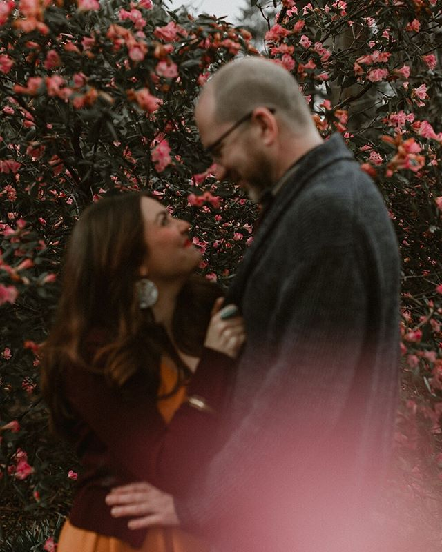 This engagement session was taken at the Portland Crystal Springs Rhododendron Garden just as spring started. The couple was standing in front of the only bush that had flowers on it when we got there! I'm seeing rhododendrons blooming all over Portland now and I want to go back! Any couples out there want to be photographed there??!