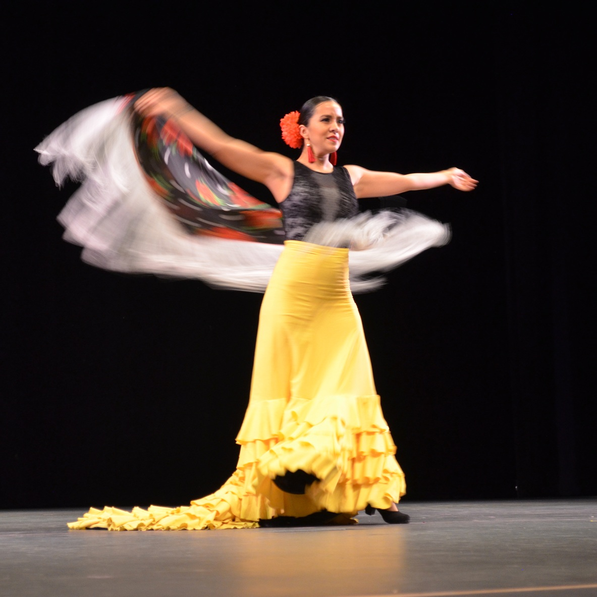 WINTER 2017 RECITAL  Semilla Flamenca presented all what they learned from Sept-Jan. This happened at the Redmond Performing Arts Center, and our special guest was Diana Hernandez Leon.