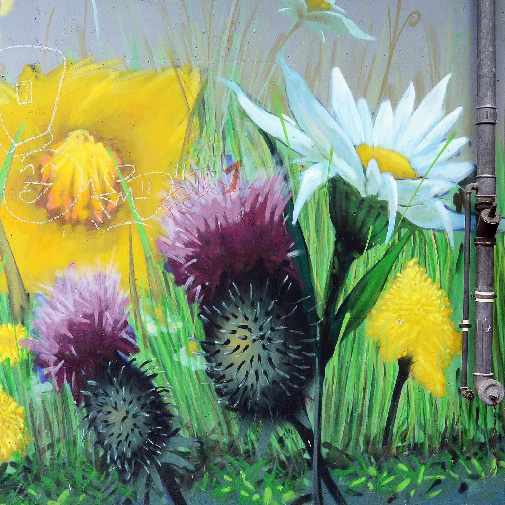 graffiti-2245704.jpg