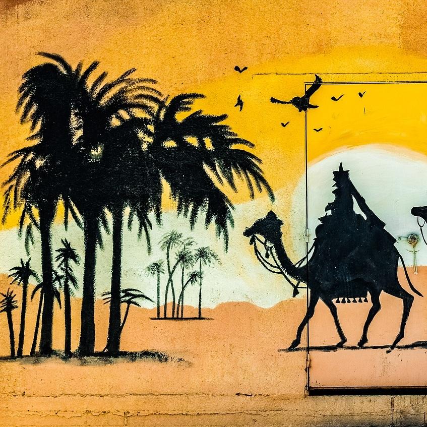 camels-3721290_1920.jpg