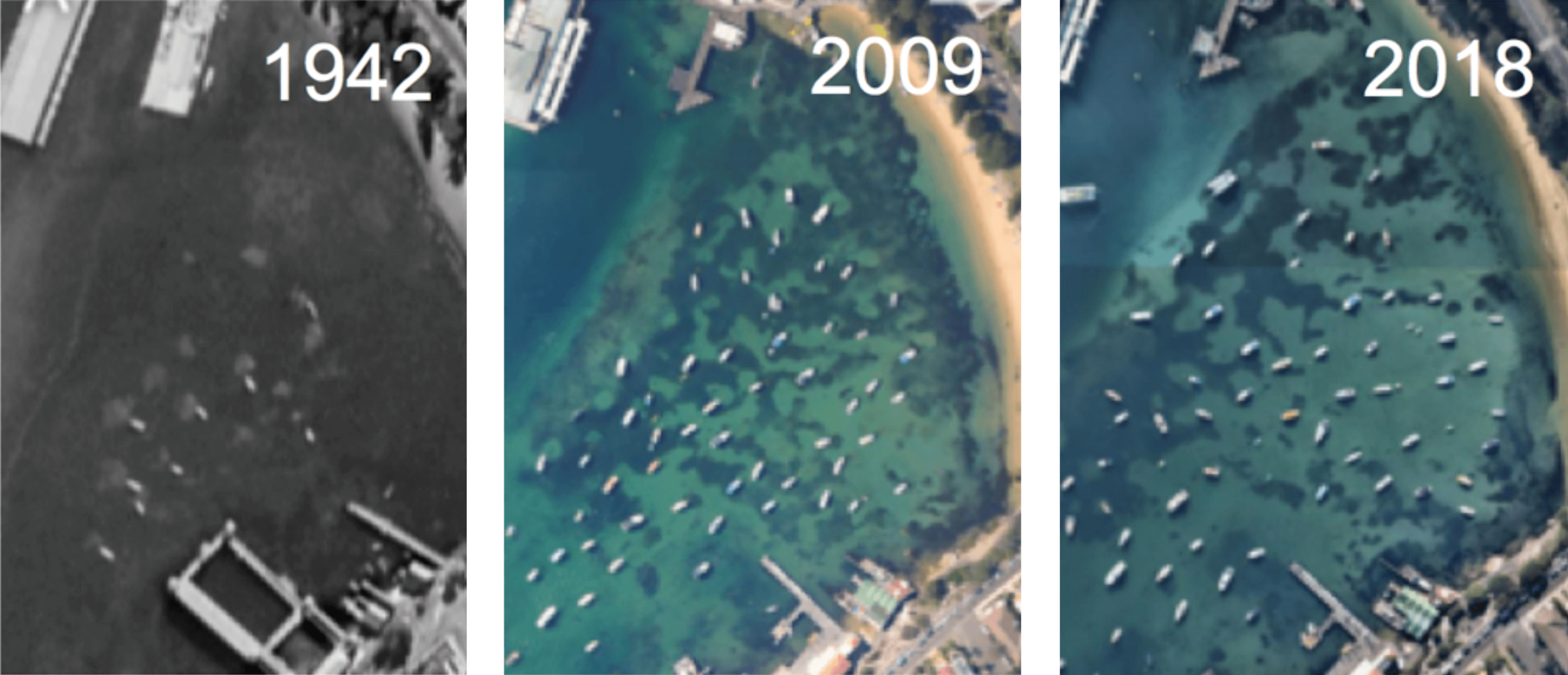 Photos: Aerial shots over Manly showing the presence of just a few boat mooring scars in 1942. By 2009, the remaining seagrass is visible as dark patches surrounded by some bare light-coloured sand where moorings scour the seafloor. Seagrass has continued to decline at an alarming rate in the last ten years.