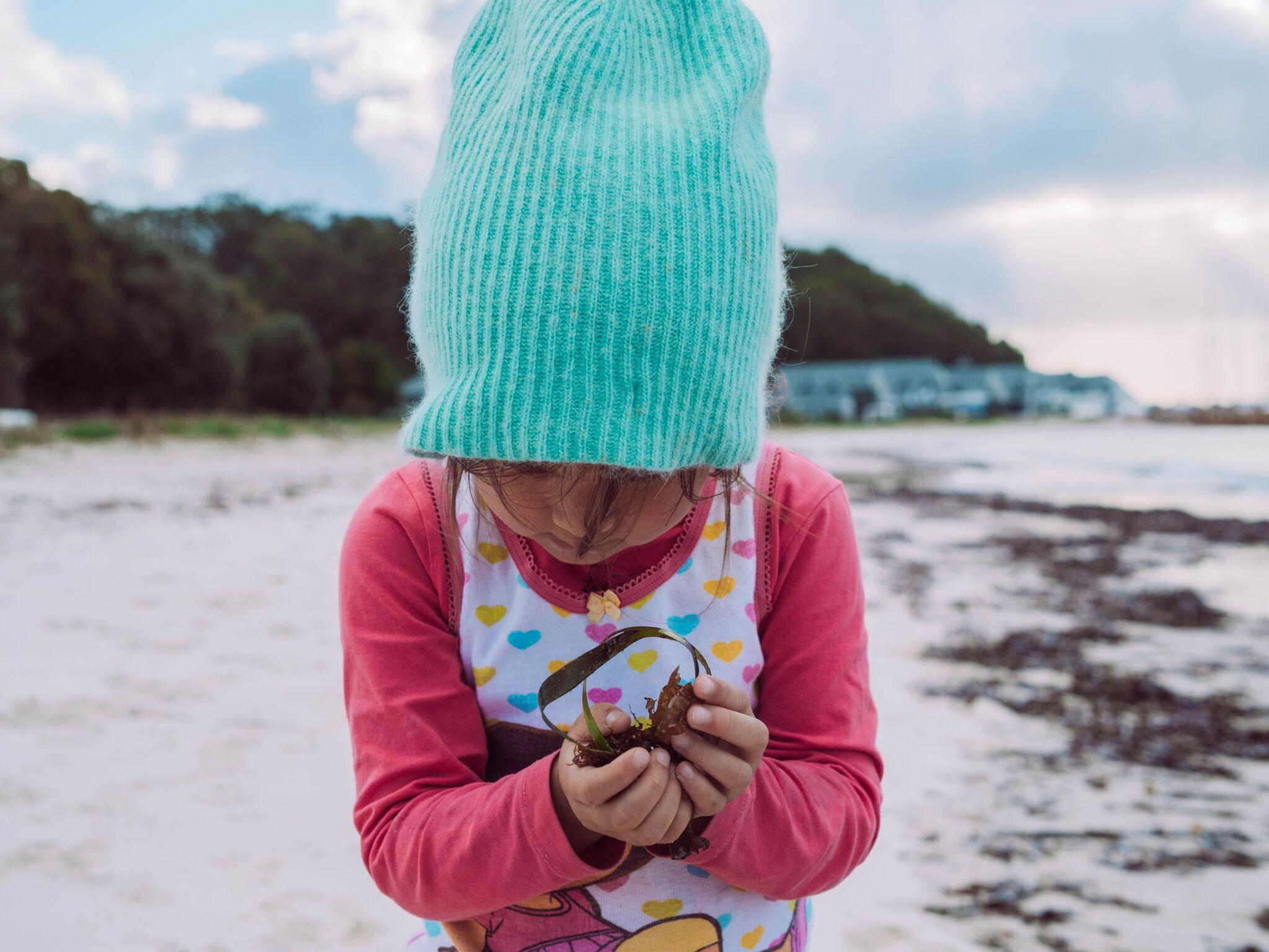 Photos:  Harriet Spark, Grumpy Turtle