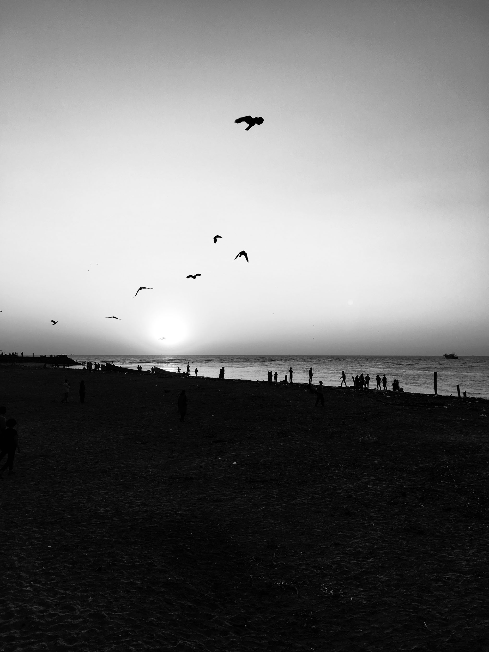 Sindhur_Photography_Kochi Muziris Biennale -2019-58.JPG