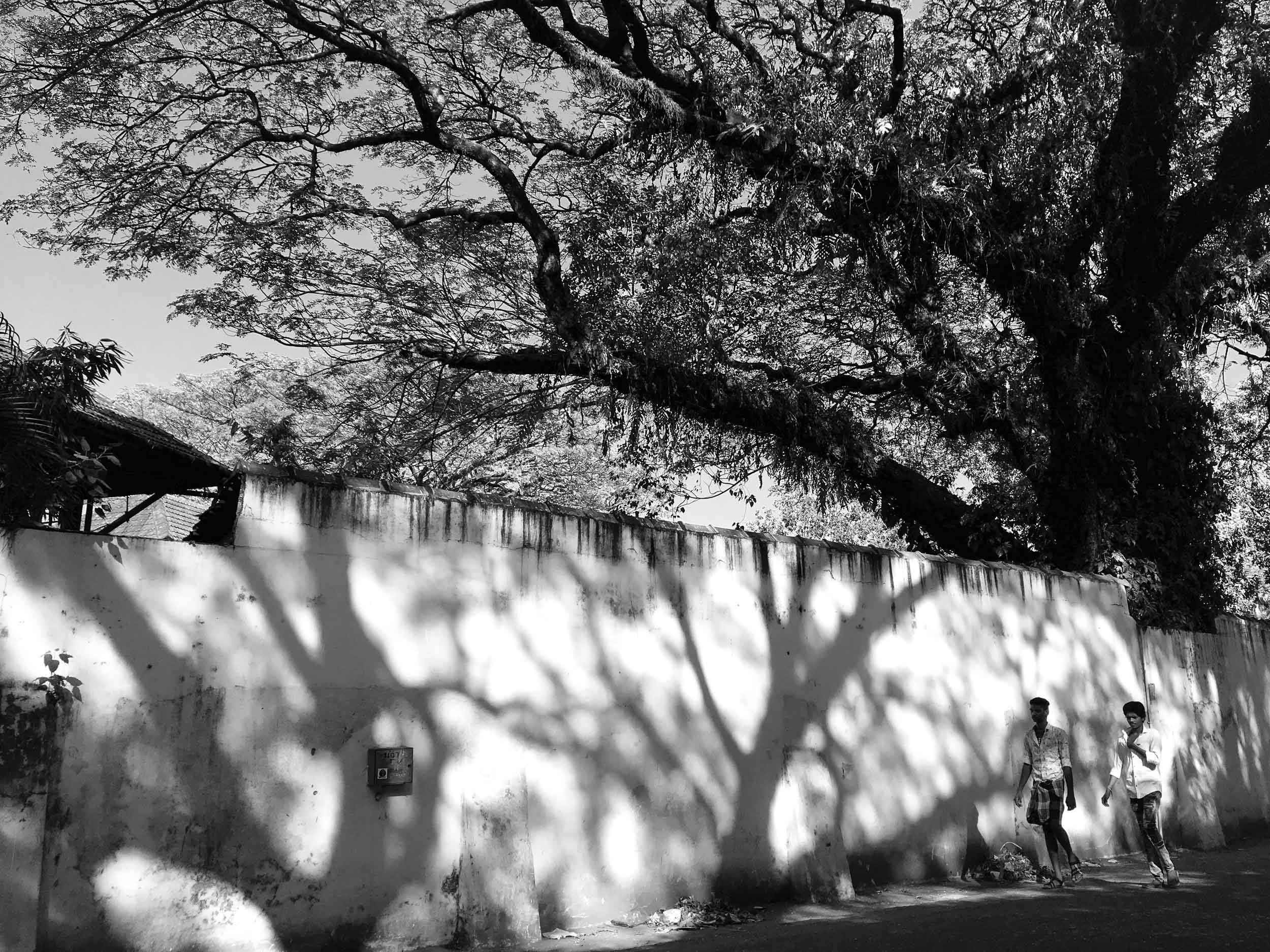 Sindhur_Photography_Kochi Muziris Biennale -2019-60-2.JPG