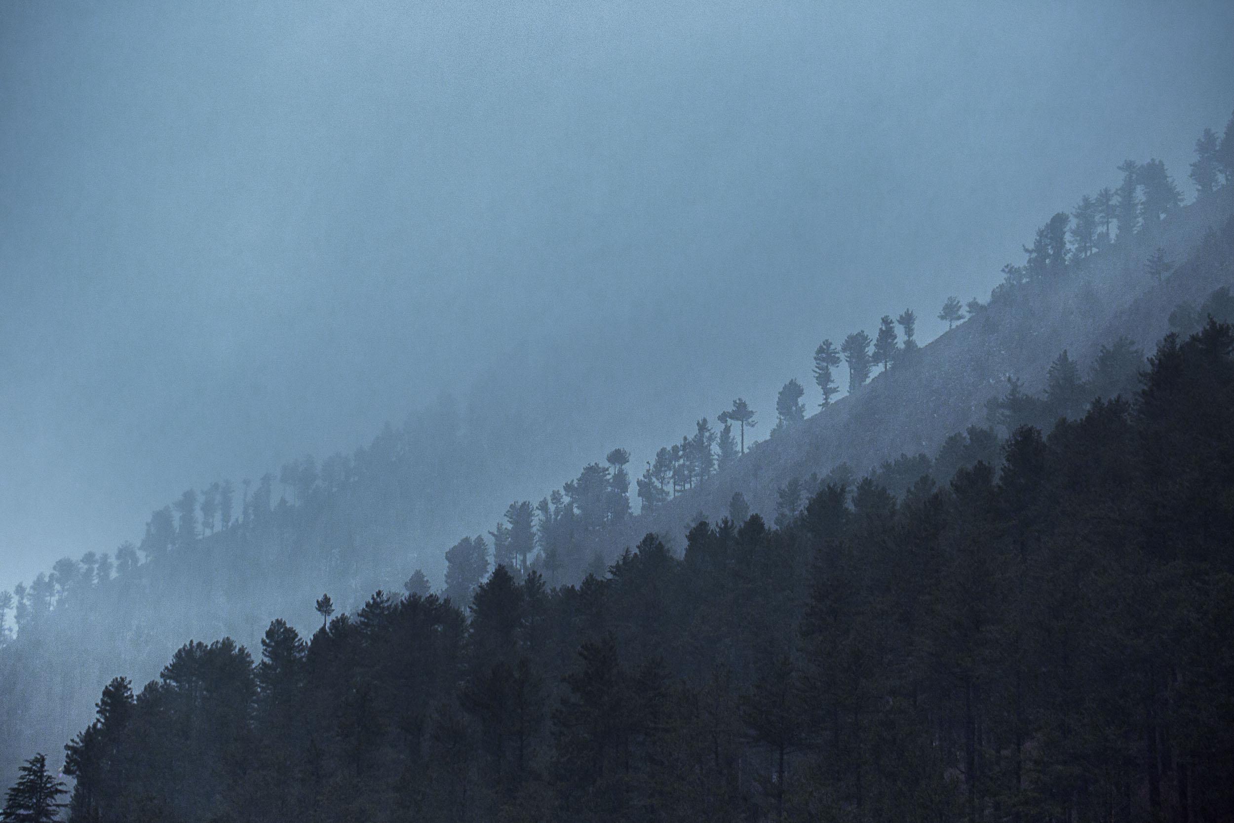 Sindhur_Photography_Travel_Nature_Kashmir-15.JPG