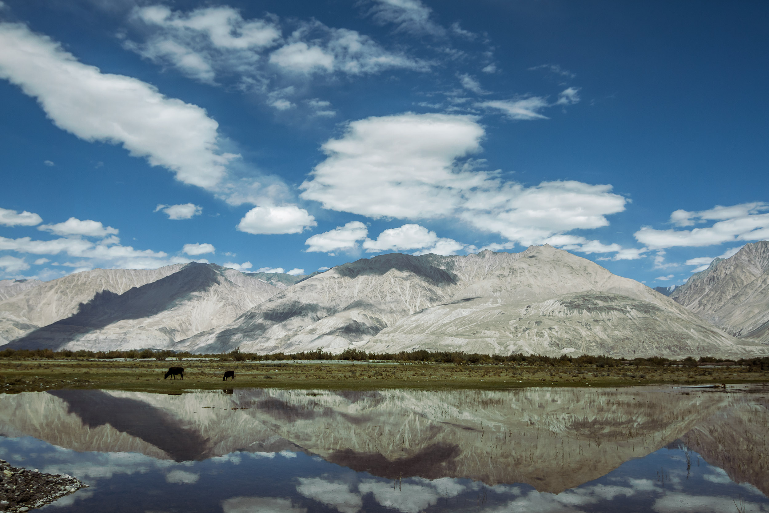 Sindhur_Photography_Travel_Landscape_Ladakh-21.JPG