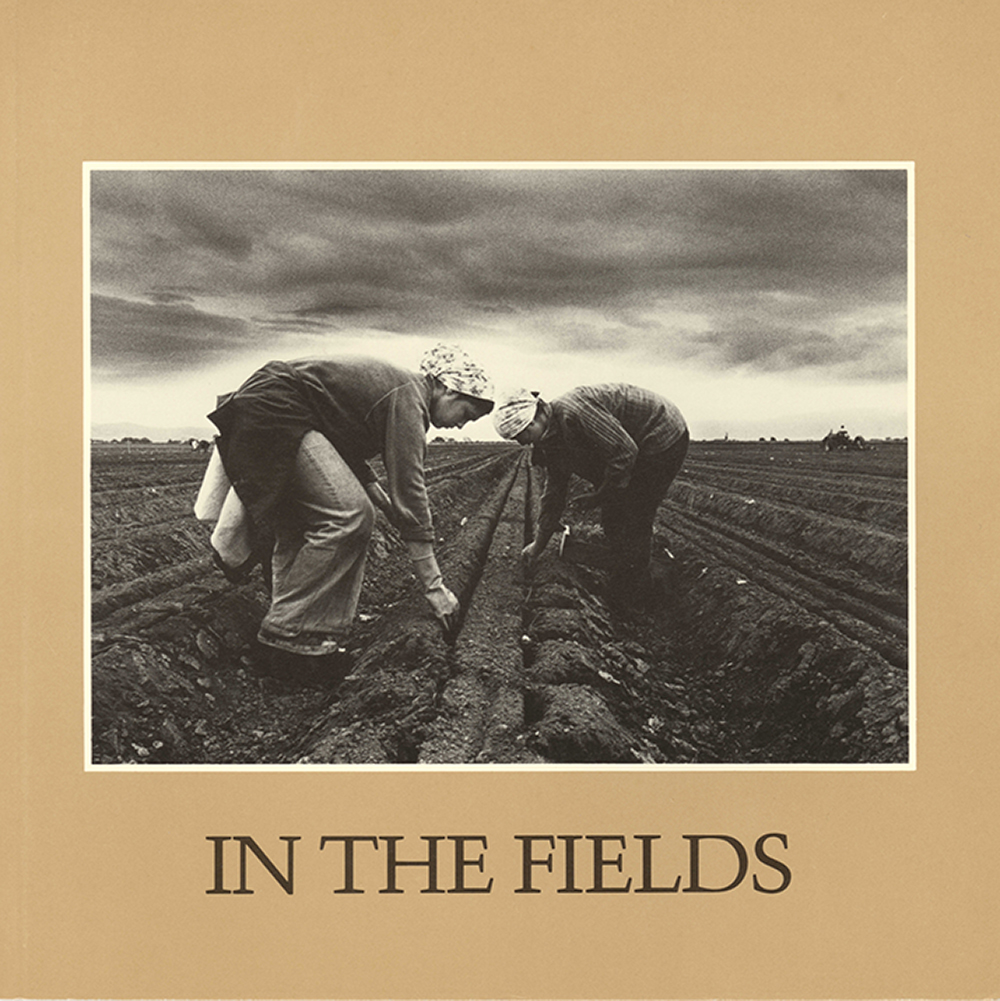 In The Fields.jpg