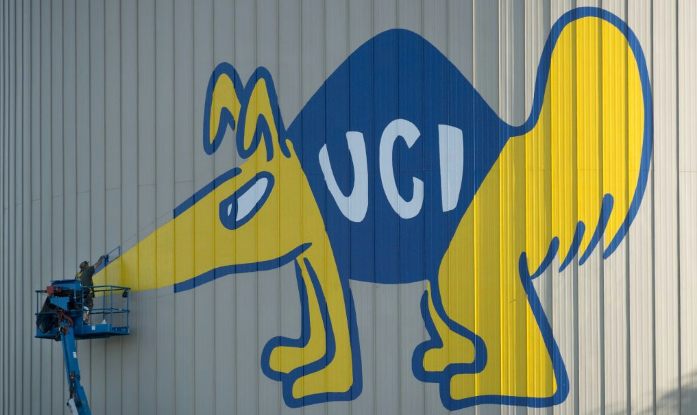 at UC Irvine hand painting the water tower Peter the Anteater graphic