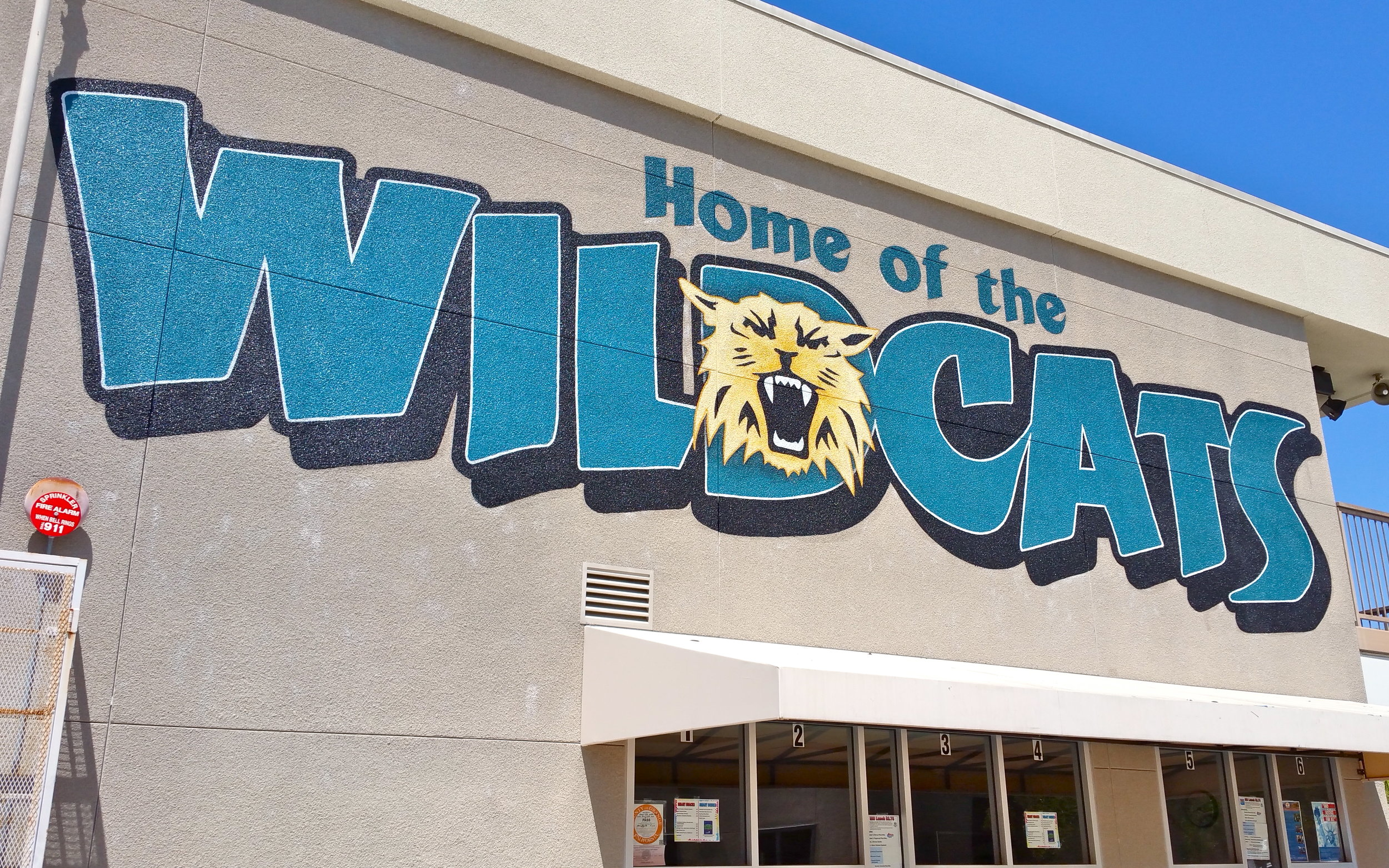 Wildcats school mural hand painted on stucco surface