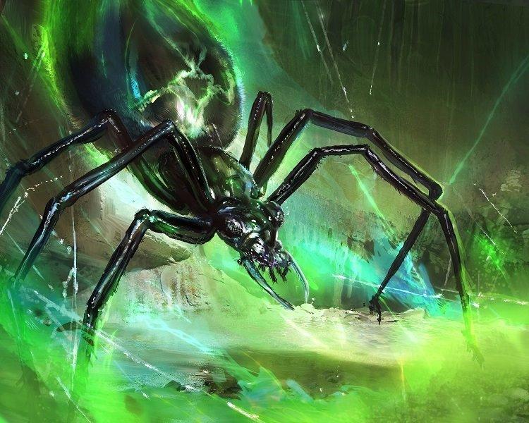 swarming spider.jpg
