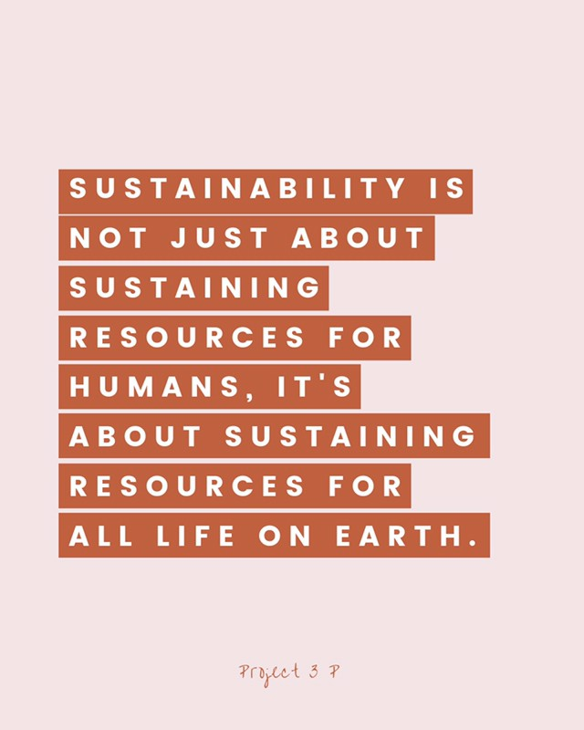DOUBLE TAP IF YOU AGREE ☝🏼 // In our latest blog post, we've broken down what sustainability really is and how it can be achieved in your lifestyle and business ♻️⠀⠀⠀⠀⠀⠀⠀⠀⠀ .⠀⠀⠀⠀⠀⠀⠀⠀⠀ Sustainability is not just about  sustaining resources for humans and future generations, it's about sustaining resources for all life on earth including all the bees and the turtles 🌏⠀⠀⠀⠀⠀⠀⠀⠀⠀ .⠀⠀⠀⠀⠀⠀⠀⠀⠀ Click the link in my bio to have a read ✨⠀⠀⠀⠀⠀⠀⠀⠀⠀ .⠀⠀⠀⠀⠀⠀⠀⠀⠀ .⠀⠀⠀⠀⠀⠀⠀⠀⠀ .⠀⠀⠀⠀⠀⠀⠀⠀⠀ #sustainability #sustainable #ecofriendly #eco #sustainablefashion #ethical #ethicalfashion #fairtrade #sustainableliving #slowfashion #gogreen #savetheplanet #bethechange #changetheworld #activist #environment #climatechange #makeadifference #nonprofit #activism #socialgood #givingback #zerowaste #dogood #changemaker #purchasewithpurpose #consciousconsumer #earthdayeveryday #sustainabilitymatters #sustainabledevelopmentgoals