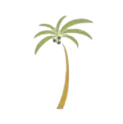 23_D'sPalm.png