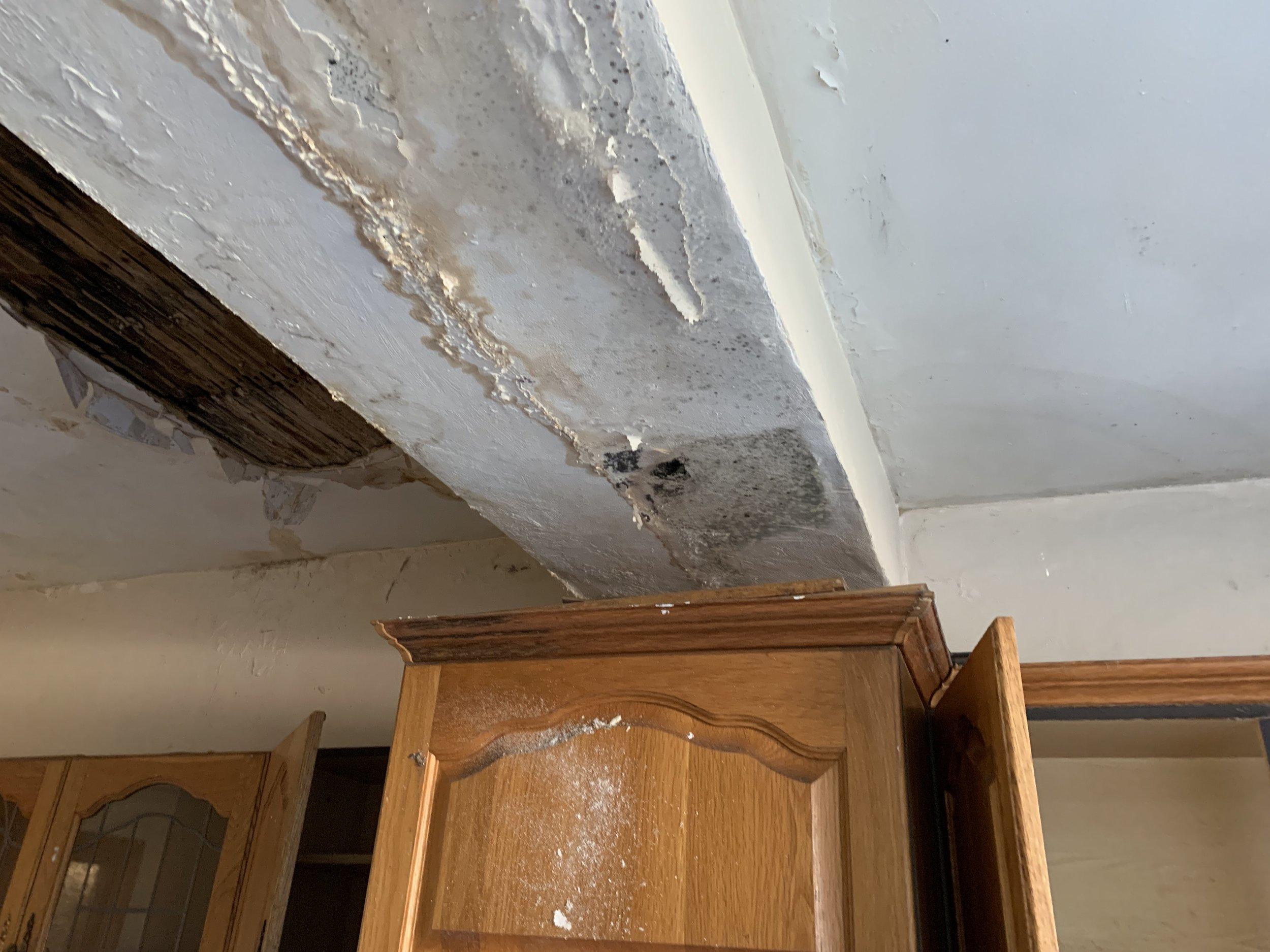 Ilford ceiling